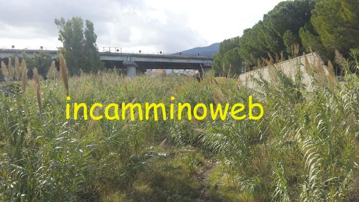 Patti: finalmente sarà ripulito il torrente Montagnareale