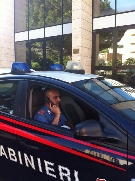 Caronia: i Carabinieri sequestrano un centinaio di bovini e denunciano tre allevatori